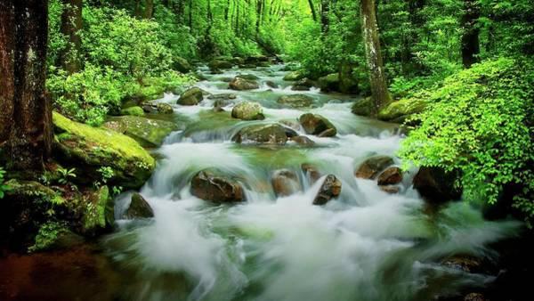 Photograph -  The Middle Saluda River, South Carolina by Flying Z Photography by Zayne Diamond