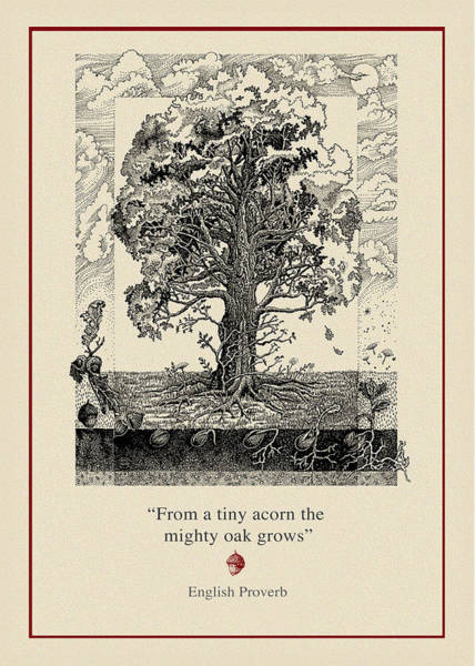 Acorn Wall Art - Drawing - The Mighty Oak by Ernestine Grindal