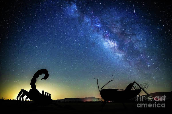 Photograph - The Milky Way And Friends by David Levin