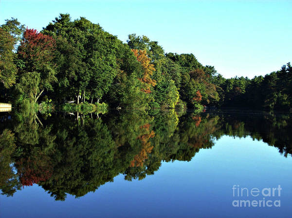 Flawless Photograph - The Mirror Image by Mary Ann Weger