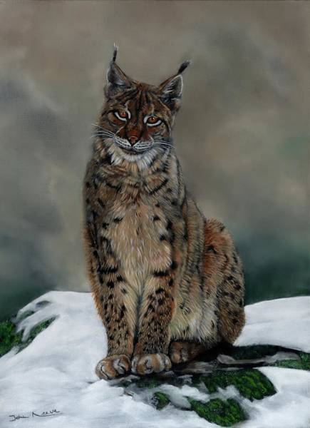 Painting - The Missing Lynx by John Neeve