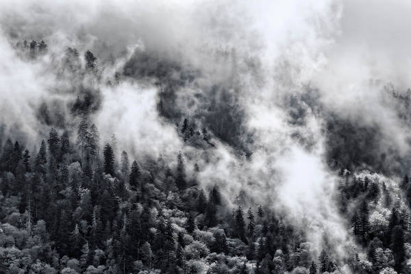 Photograph - The Misty Smoky Mountains In Black And White by Kay Brewer