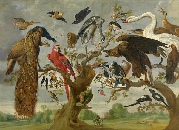 Canaries Painting - The Mockery Of The Owl by Jan van Kessel