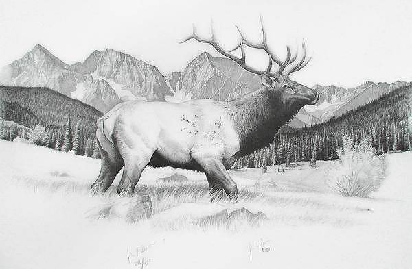 Elk Mountain Drawing - The Monarch And The Apostles by John Senior