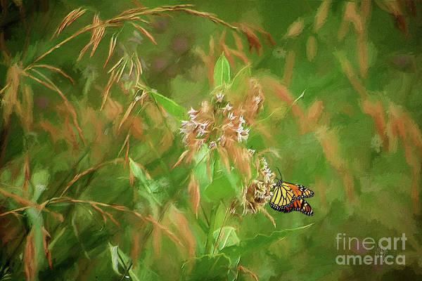 Digital Art - The Monarchs Return by Lois Bryan