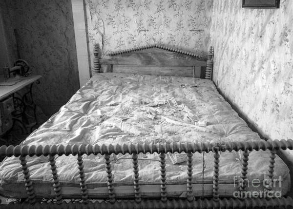Photograph - The Money Bed by Craig J Satterlee
