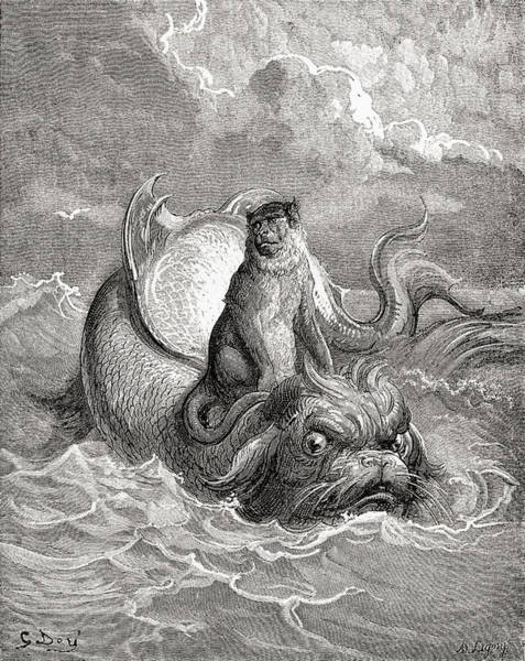 Dor Drawing - The Monkey And The Dolphin After A Work by Vintage Design Pics