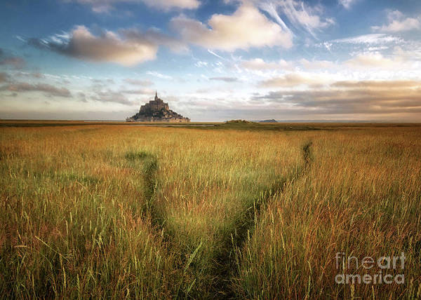 Photograph - The Mont Saint-michel's Bay by Dominique Guillaume