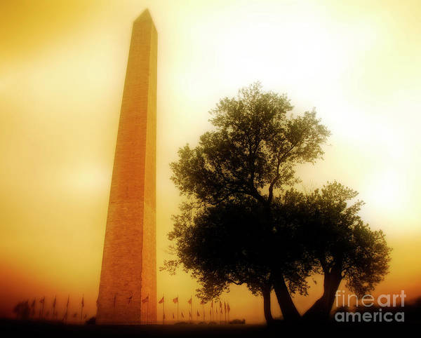 Photograph - The Monument by Scott Kemper