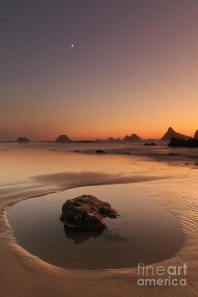 Wayside Photograph - The Moon Above The Beach by Masako Metz