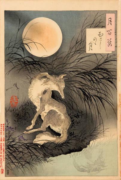 Drawing - The Moon On Musashi Plain . Musashino No Tsuki by Tsukioka Yoshitoshi