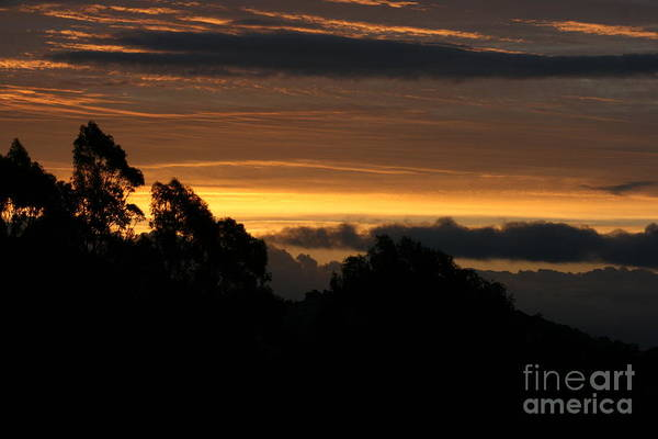 Photograph - The Mountain At Sunrise by Cynthia Marcopulos