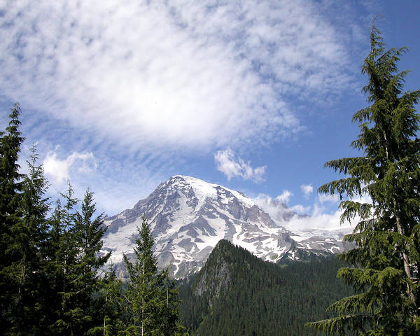 Photograph - The Mountain  Mt Rainier  Washington by Michael Bessler