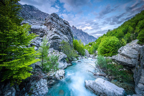 Photograph - The Mountain Spring by Radek Spanninger