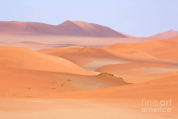 Wall Art - Photograph - The Namib Desert In Namibia, Africa by Julia Hiebaum