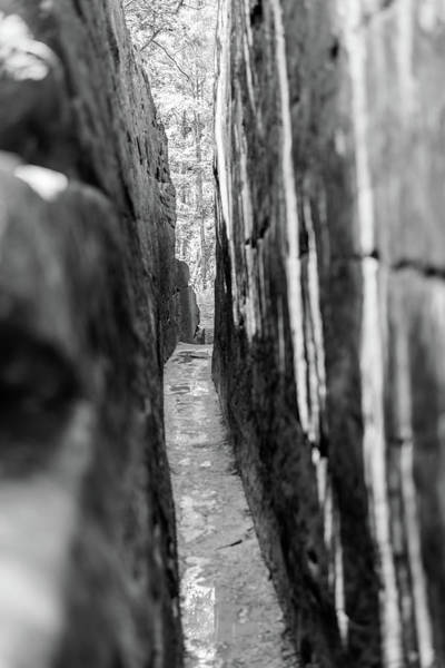Photograph - The Narrow Path Monochrome by Michael Scott