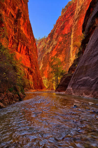 Photograph - The Narrows by Greg Norrell
