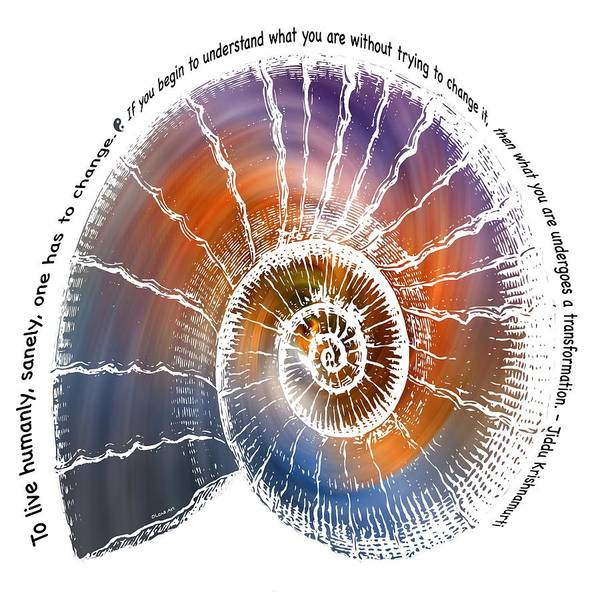 Digital Art - The Nautilus Shell Transparent -  Quote by OLena Art - Lena Owens