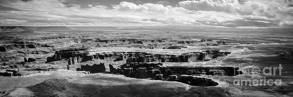 Photograph - The Needles At Canyonlands by Scott and Amanda Anderson