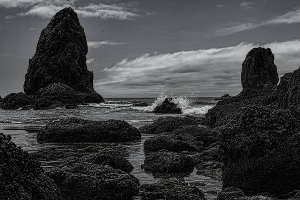 Photograph - The Needles Black And White by Dale Kauzlaric