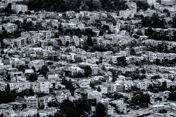Photograph - The Neighborhood by Emily Bristor