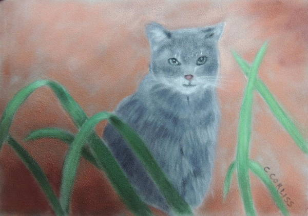 Painting - The Neighbor's Cat by Carol Corliss