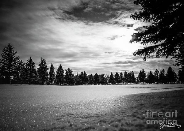 Photograph - The Next Morning by Adam Morsa