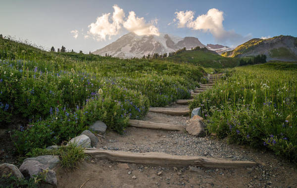 Mount Rainier Photograph - The Next Step by Kristopher Schoenleber