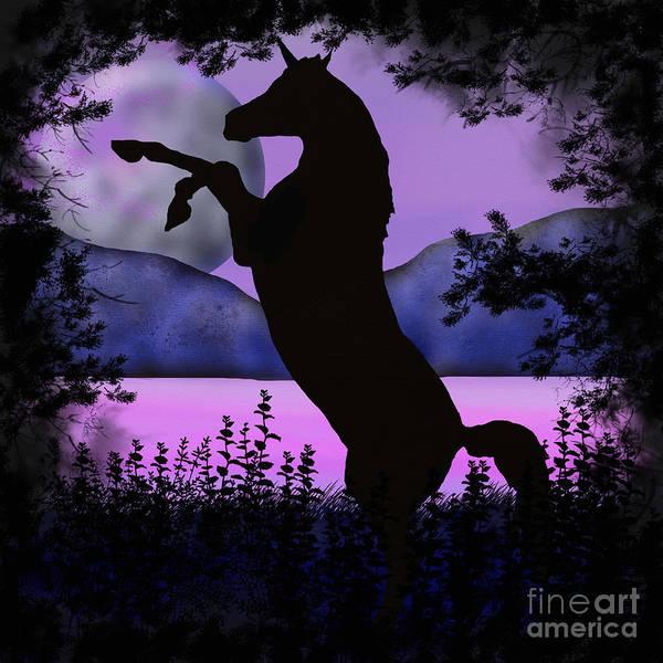 The Night Of The Unicorn Art Print