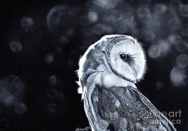 Barn Owl Mixed Media - The Night Watcher by Bonnita Moaby