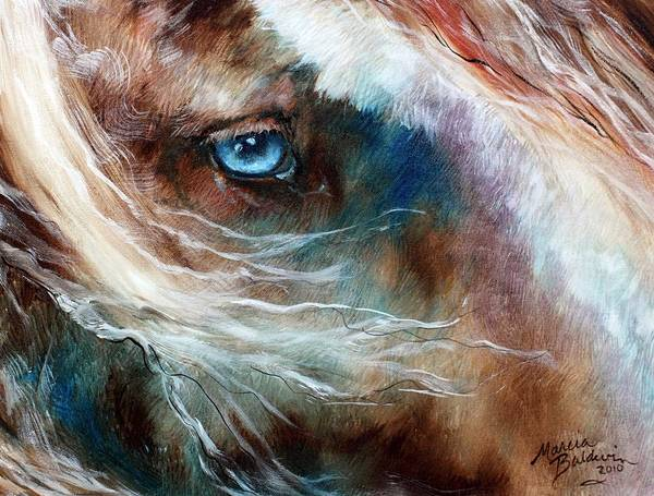Painting - The Noble Equine Eye by Marcia Baldwin