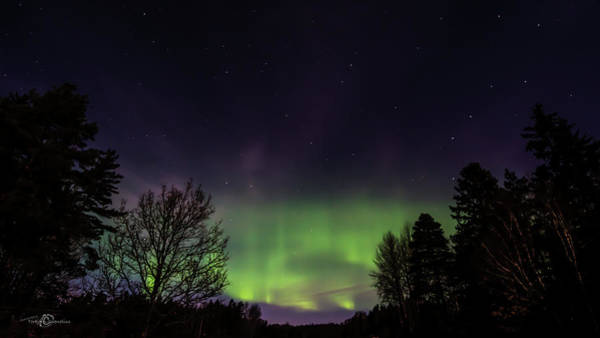 Photograph - The Northern Lights Aurora Borealis  by Torbjorn Swenelius