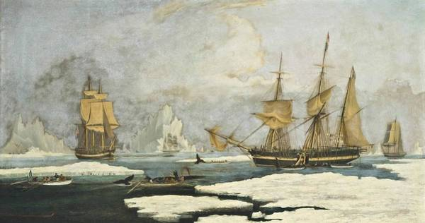 1781 Painting - The Northern Whale Fishery by MotionAge Designs