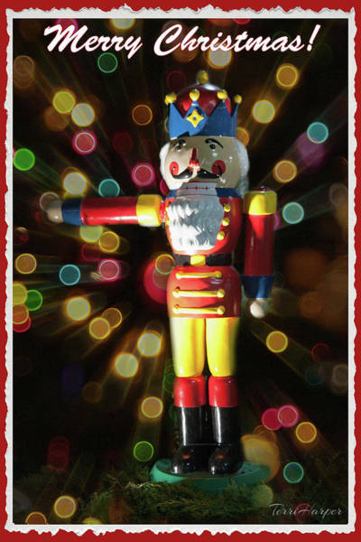 Photograph - The Nutcracker by Terri Harper