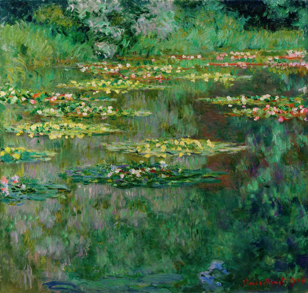 Nympheas Painting - The Nympheas Basin by Claude Monet
