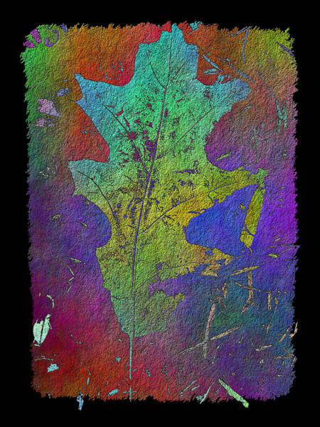 Arbor Digital Art - The Oak Leaf by Tim Allen
