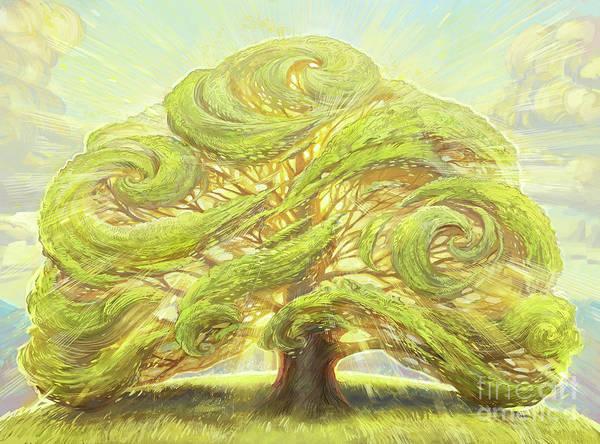Oak Digital Art - The Oak On The Hill by MGL Meiklejohn Graphics Licensing