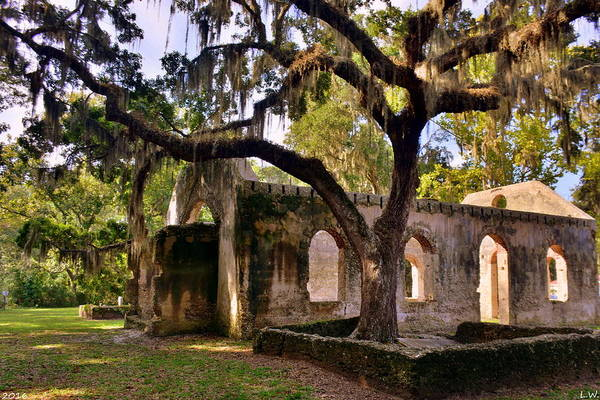 Photograph - The Oaks At Chapel Of Ease St. Helena Island Beaufort Sc by Lisa Wooten