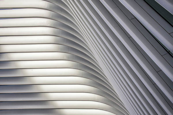Photograph - The Oculus 4 by Paul Wear