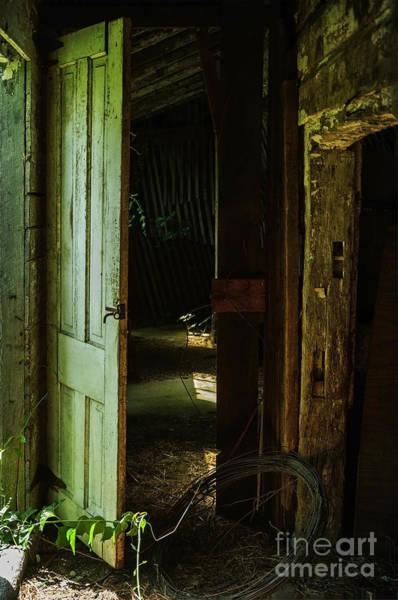 Photograph - The Old Barn by Debra Fedchin