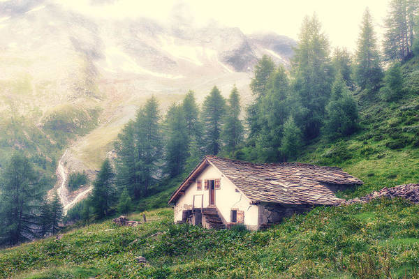 Photograph - The Old Cabin by James Billings