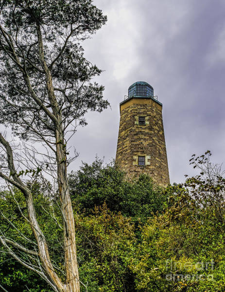 Photograph - The Old Cape Henry Light by Nick Zelinsky