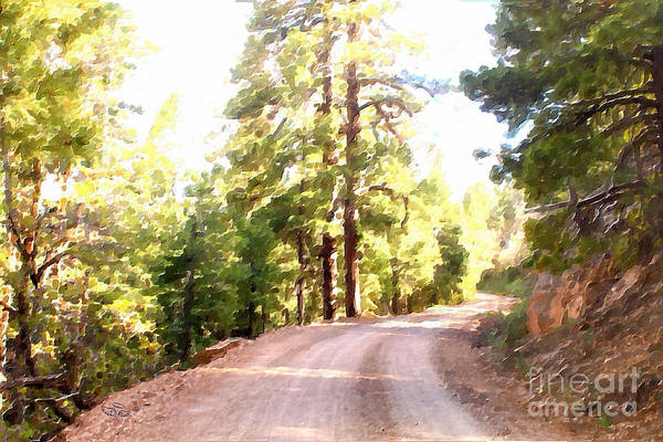 Photograph - The Old Dirt Road by Beauty For God