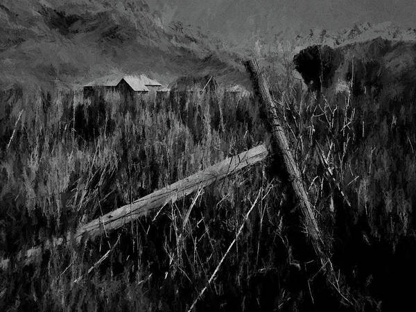 Shed Digital Art - The Old Fence Post Dp by David King