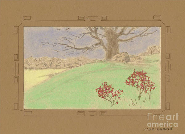 Drawing - The Old Gully Tree by Donna L Munro