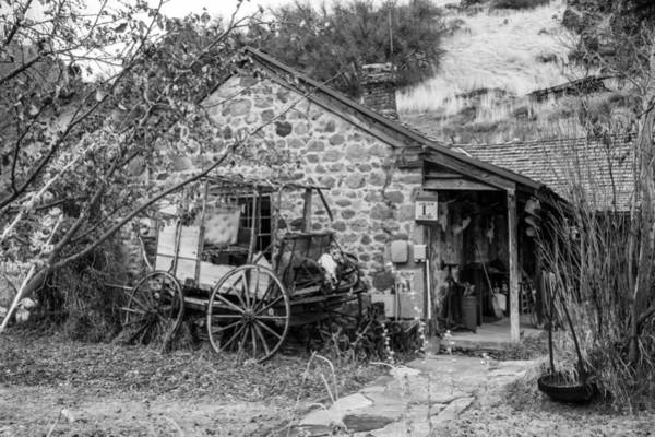 Photograph - The Old Homestead by TL  Mair