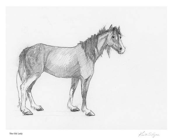 Appaloosa Drawing - The Old Lady by Krista Payne