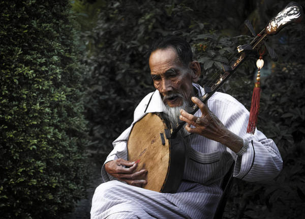 Treen Photograph - The Old Man Plays Zither by Son Truong
