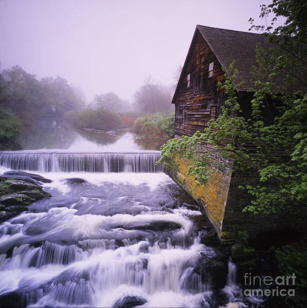Photograph - The Old Mill by Len Rue Jr.