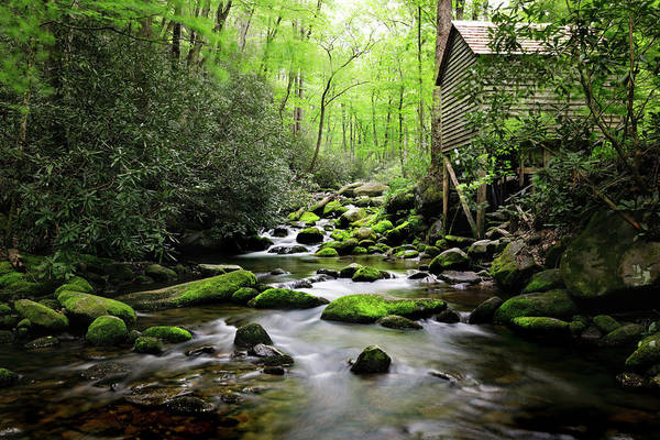 Photograph - The Old Mill by Nicholas Blackwell